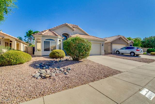 2227 E Escuda Road, Phoenix, AZ 85024 (MLS #6115815) :: Midland Real Estate Alliance