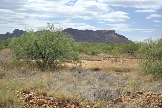 TBD Lot 19 Chula Vista Road, Huachuca City, AZ 85616 (MLS #6115861) :: My Home Group