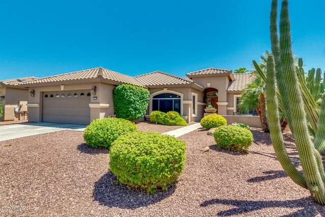 3665 N 161ST Avenue, Goodyear, AZ 85395 (MLS #6115916) :: Long Realty West Valley