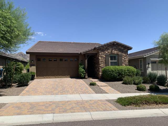 20804 W Meadowbrook Avenue, Buckeye, AZ 85396 (MLS #6115929) :: The Property Partners at eXp Realty