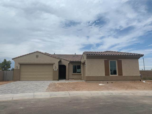 900 W Flamingo Drive, Chandler, AZ 85286 (MLS #6115944) :: The Bill and Cindy Flowers Team