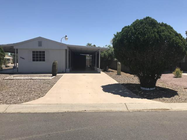 9681 E Sunland Avenue, Mesa, AZ 85208 (MLS #6116071) :: Conway Real Estate