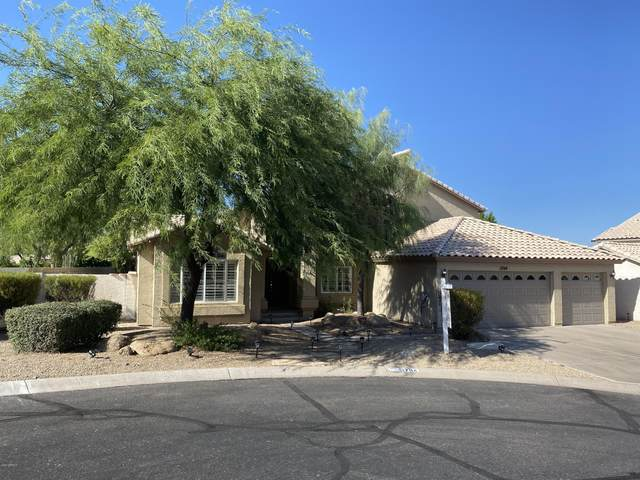 1704 E Redfield Road, Phoenix, AZ 85022 (MLS #6116101) :: Klaus Team Real Estate Solutions