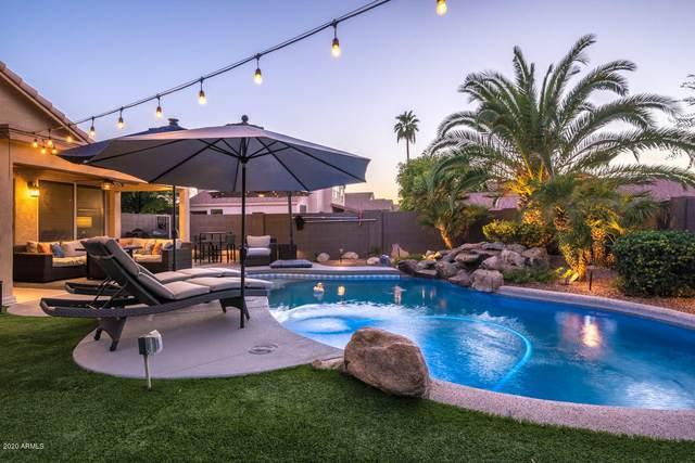 2202 E Wahalla Lane, Phoenix, AZ 85024 (MLS #6116103) :: Kepple Real Estate Group