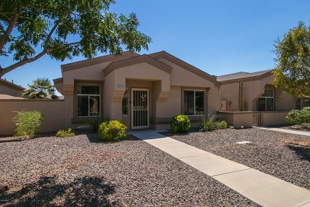 18619 N 136TH Drive, Sun City West, AZ 85375 (MLS #6116143) :: Nate Martinez Team