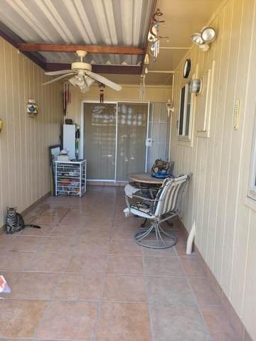 13706 N 98TH Avenue I, Sun City, AZ 85351 (MLS #6116224) :: Yost Realty Group at RE/MAX Casa Grande
