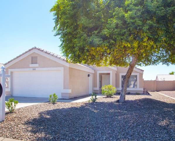 8258 N 111TH Lane, Peoria, AZ 85345 (MLS #6116237) :: REMAX Professionals