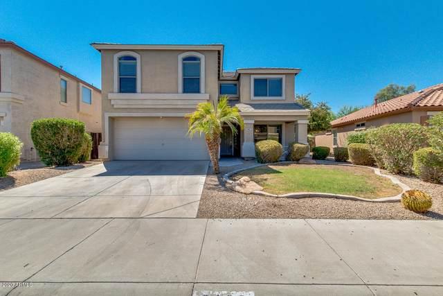 2162 S 160TH Lane, Goodyear, AZ 85338 (MLS #6116248) :: Russ Lyon Sotheby's International Realty