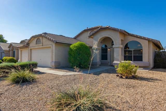 12714 W Edgemont Avenue, Avondale, AZ 85392 (MLS #6116266) :: Arizona 1 Real Estate Team