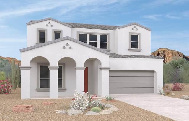2053 E Questa Drive, Phoenix, AZ 85024 (MLS #6116359) :: Kepple Real Estate Group