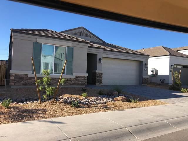 1943 E Questa Drive, Phoenix, AZ 85024 (MLS #6116372) :: Kepple Real Estate Group