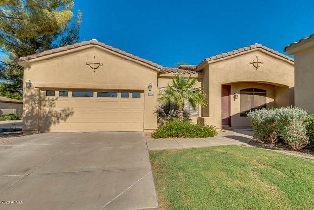 2037 W Periwinkle Way, Chandler, AZ 85248 (MLS #6116417) :: Kevin Houston Group