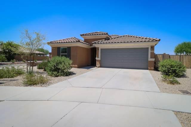 2424 S 172ND Lane, Goodyear, AZ 85338 (MLS #6116457) :: Russ Lyon Sotheby's International Realty