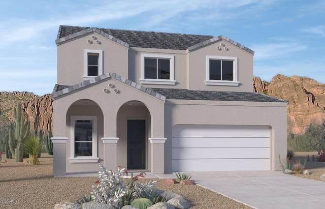 24533 N 19th Terrace, Phoenix, AZ 85024 (MLS #6116459) :: Kepple Real Estate Group