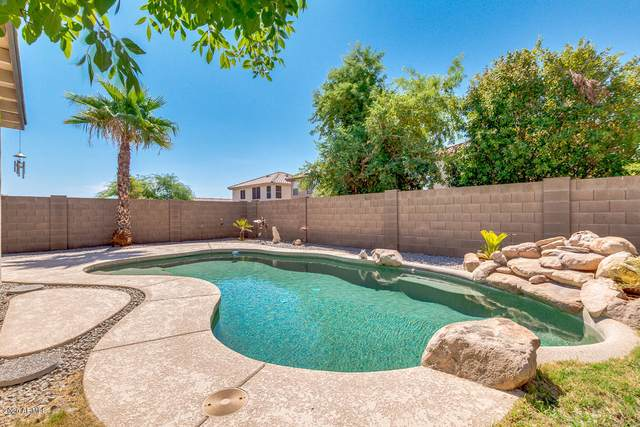 12215 W Columbine Drive, El Mirage, AZ 85335 (MLS #6116478) :: Scott Gaertner Group