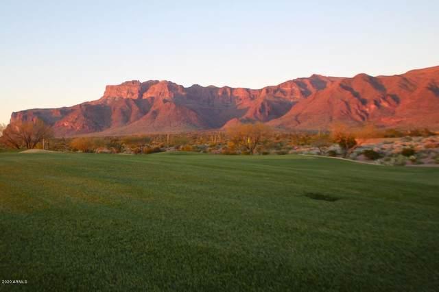 9431 E Canyon View Trail, Gold Canyon, AZ 85118 (MLS #6116506) :: Howe Realty