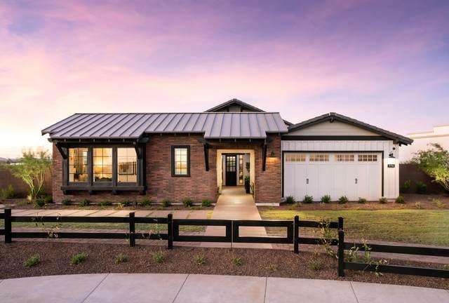 9780 W Wizard Lane, Peoria, AZ 85383 (MLS #6116509) :: Howe Realty