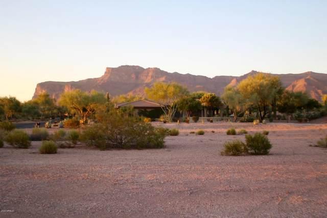 3873 S Gambel Quail Way, Gold Canyon, AZ 85118 (MLS #6116512) :: Howe Realty