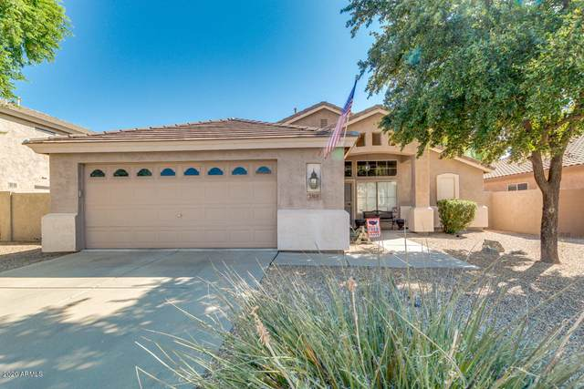 2303 E Torrey Pines Place, Chandler, AZ 85249 (MLS #6116513) :: Klaus Team Real Estate Solutions