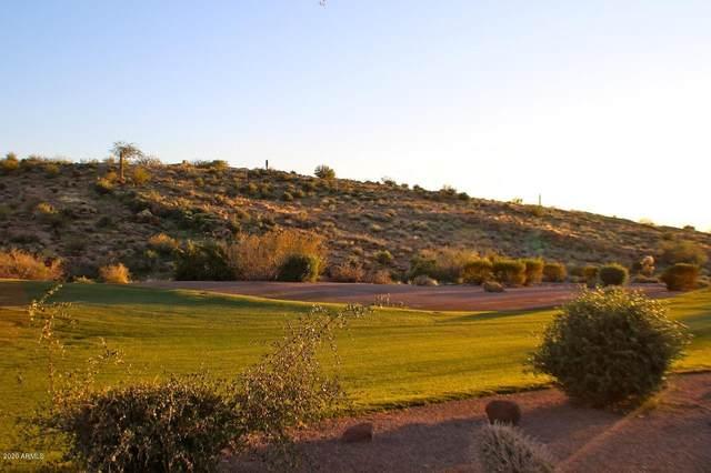 9171 E Canyon View Trail, Gold Canyon, AZ 85118 (MLS #6116521) :: Russ Lyon Sotheby's International Realty