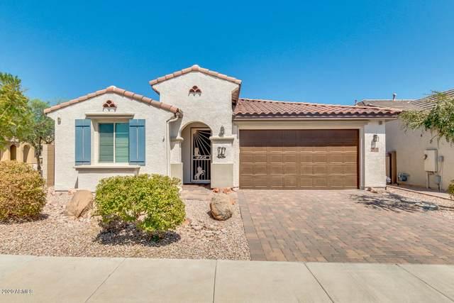 16119 N 109TH Drive, Sun City, AZ 85351 (MLS #6116589) :: Yost Realty Group at RE/MAX Casa Grande