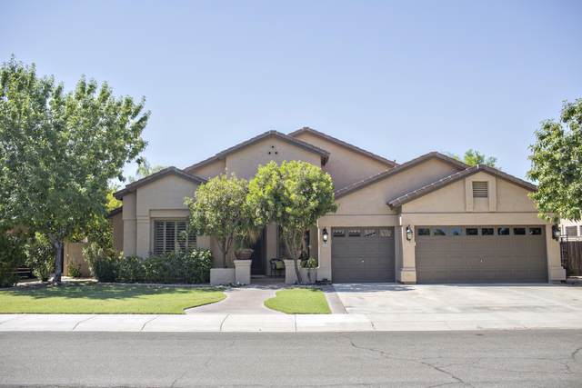 2351 W Maplewood Street, Chandler, AZ 85286 (MLS #6116595) :: Kevin Houston Group