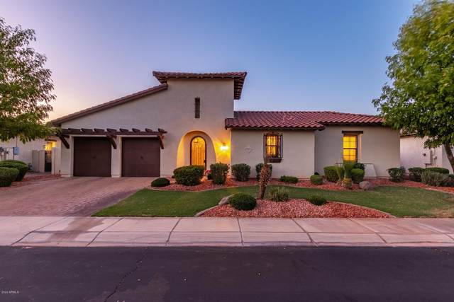 2410 W Longhorn Drive, Chandler, AZ 85286 (MLS #6116599) :: Kevin Houston Group