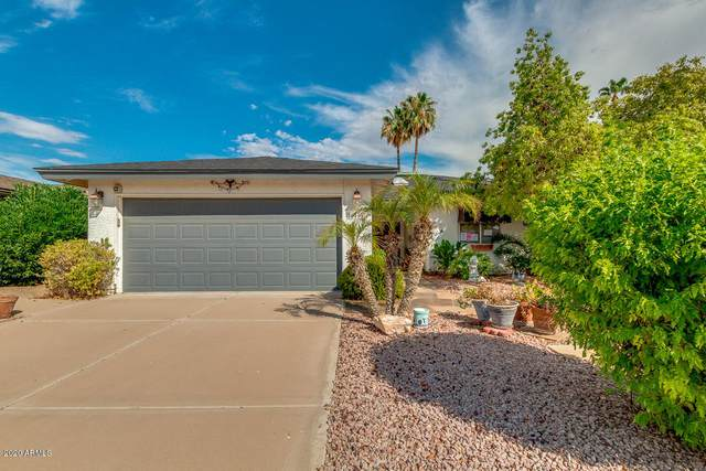 26401 S Greencastle Drive, Sun Lakes, AZ 85248 (MLS #6116616) :: Klaus Team Real Estate Solutions