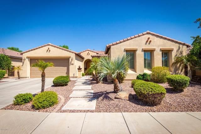 322 W Aster Drive, Chandler, AZ 85248 (MLS #6116698) :: The Garcia Group