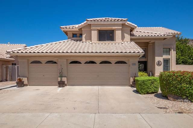 6140 W Questa Drive, Glendale, AZ 85310 (MLS #6116737) :: Nate Martinez Team