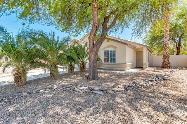 919 E Morelos Street, Chandler, AZ 85225 (MLS #6116759) :: My Home Group