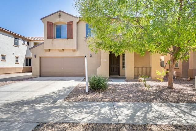 14743 W Poinsettia Drive, Surprise, AZ 85379 (MLS #6116765) :: Nate Martinez Team