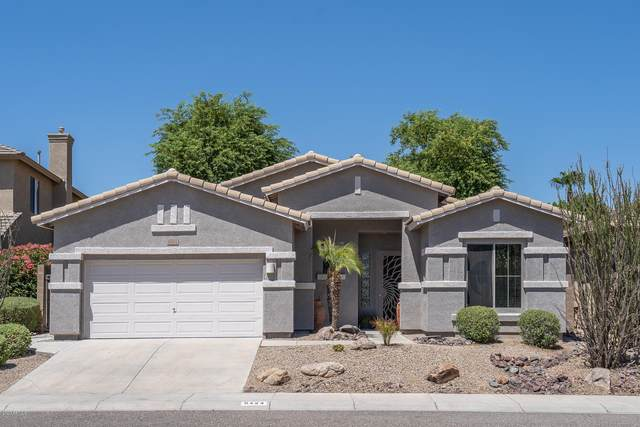 6424 W Molly Lane, Phoenix, AZ 85083 (MLS #6116774) :: Dave Fernandez Team | HomeSmart