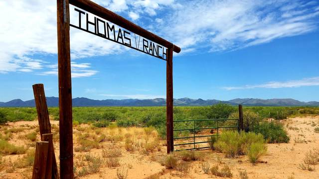 TBD N Frontier Road, McNeal, AZ 85617 (MLS #6116783) :: Brett Tanner Home Selling Team
