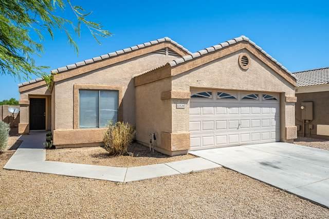 12538 W Willow Avenue, El Mirage, AZ 85335 (MLS #6116819) :: Conway Real Estate