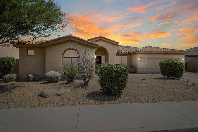 14678 W Hillside Street, Goodyear, AZ 85395 (MLS #6116860) :: Lucido Agency
