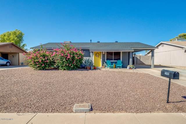 3620 E Pershing Avenue, Phoenix, AZ 85032 (MLS #6116870) :: The W Group
