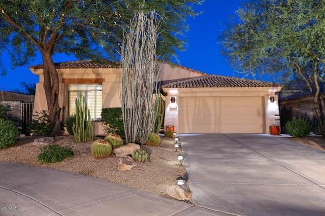 20747 N 79TH Way, Scottsdale, AZ 85255 (MLS #6116876) :: Nate Martinez Team