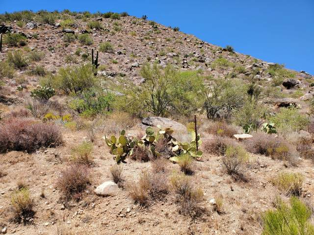 25430 S Ghost Town Road, Congress, AZ 85332 (MLS #6116897) :: Lifestyle Partners Team
