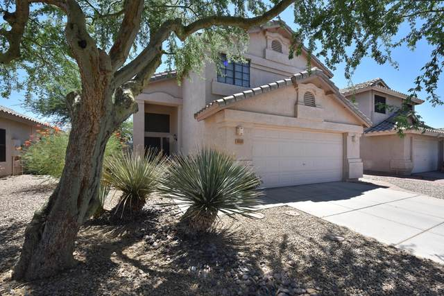 3733 W Runion Drive, Glendale, AZ 85308 (MLS #6116925) :: Klaus Team Real Estate Solutions