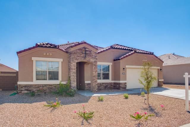 30431 W Picadilly Road, Buckeye, AZ 85396 (MLS #6116996) :: Klaus Team Real Estate Solutions