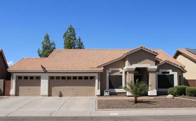 3860 W Calle Lejos Drive, Glendale, AZ 85310 (MLS #6117049) :: Klaus Team Real Estate Solutions