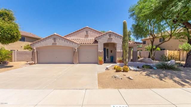 1690 E Linda Lane, Chandler, AZ 85225 (MLS #6117092) :: Walters Realty Group