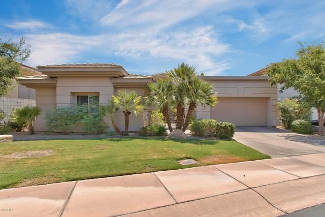 6515 N 25TH Way, Phoenix, AZ 85016 (MLS #6117112) :: My Home Group