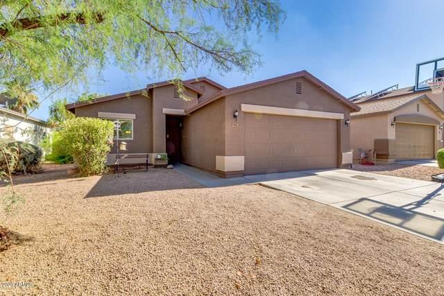 991 E Cowboy Cove Trail, San Tan Valley, AZ 85143 (MLS #6117251) :: Kepple Real Estate Group