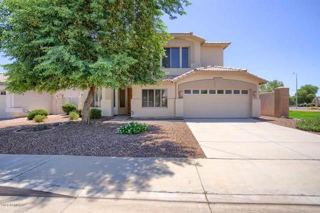 2221 W Shannon Street, Chandler, AZ 85224 (MLS #6117287) :: My Home Group