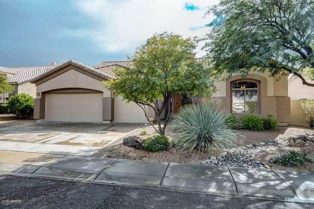 4959 E Roy Rogers Road, Cave Creek, AZ 85331 (MLS #6117335) :: Klaus Team Real Estate Solutions