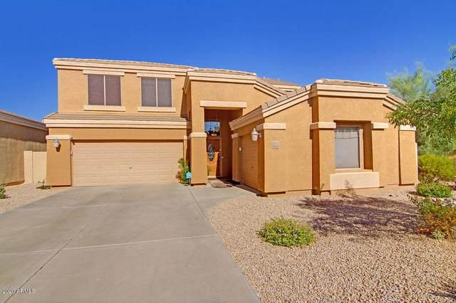 33825 N Pate Place, Cave Creek, AZ 85331 (MLS #6117337) :: Lifestyle Partners Team