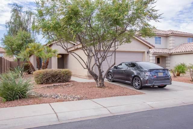 11825 W Cortez Street, El Mirage, AZ 85335 (MLS #6117349) :: Conway Real Estate
