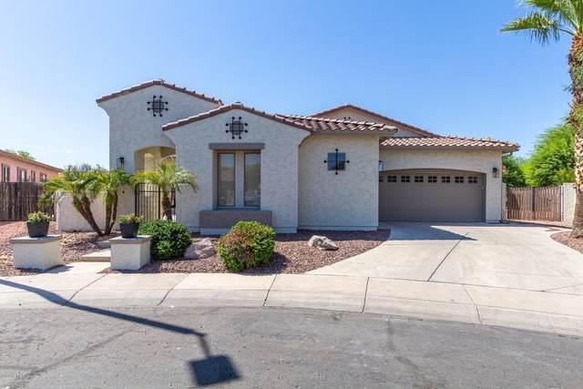 3079 E Virgo Place, Chandler, AZ 85249 (MLS #6117361) :: Kepple Real Estate Group